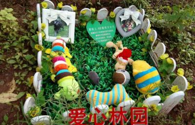 ballbet贝博网站公墓