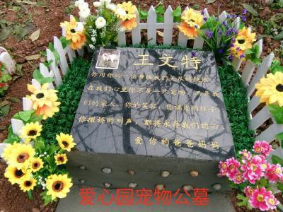 青石墓碑葬
