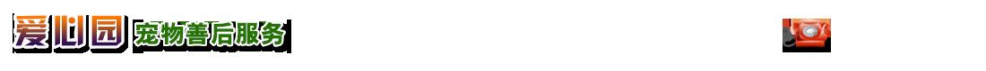 成都爱心园ballbet贝博网站服务有限公司